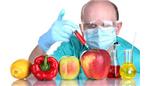 غذاهای تغییر یافته ژنتیکی