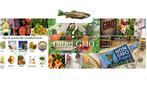 ممنوعیت واردات محصولات غذایی تغییر ژنتیک یافته (GMO)