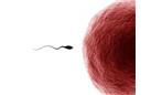 احتمال بارداری بدون دخول - آیا دختر باکره حامله میشود؟