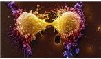 آزمایش خون برای تشخیص سرطان پروستات باید زودتر انجام شود