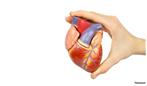 احتمال سکته قلبی و مغزی خود را محاسبه کنید